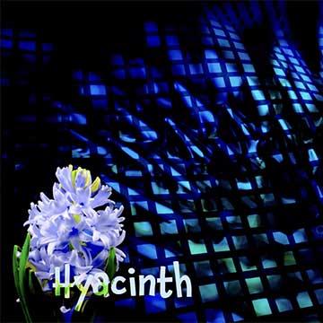 DNA Level3 Hyacinth | ShapeshifterDNA